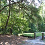Lee State Park Stone Bridge