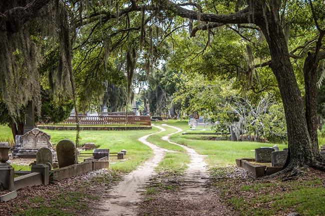 Magnolia Cemetery Road