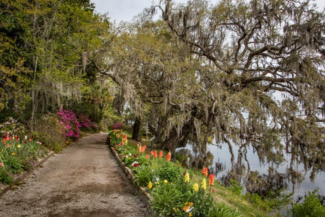 Magnolia Plantation Walking Path