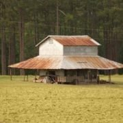 Marion Tobacco Barn