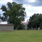 Marston Plantation