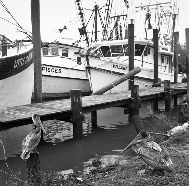 McClellanville Boat Canal