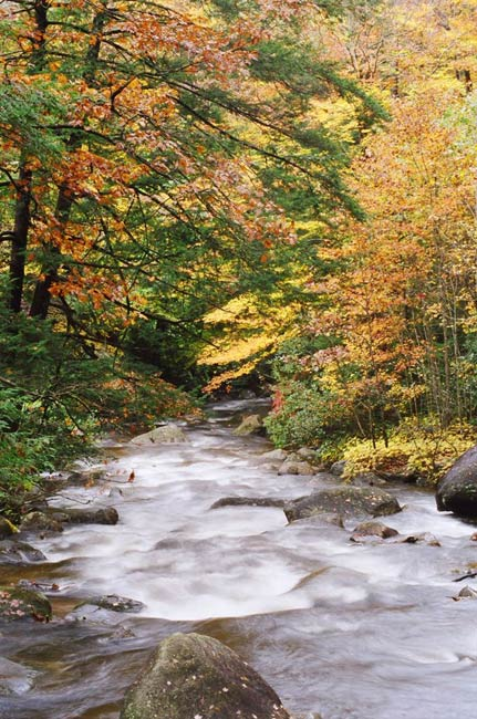 Middle Saluda Falls