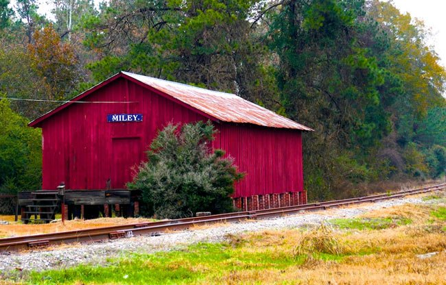 Miley Depot