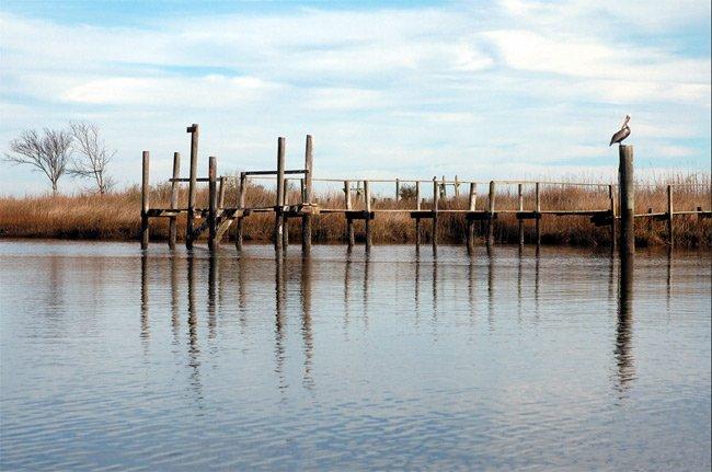 Murphys Island Cape Romain