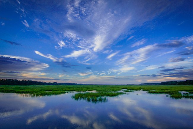 Murrells Inlet Marsh