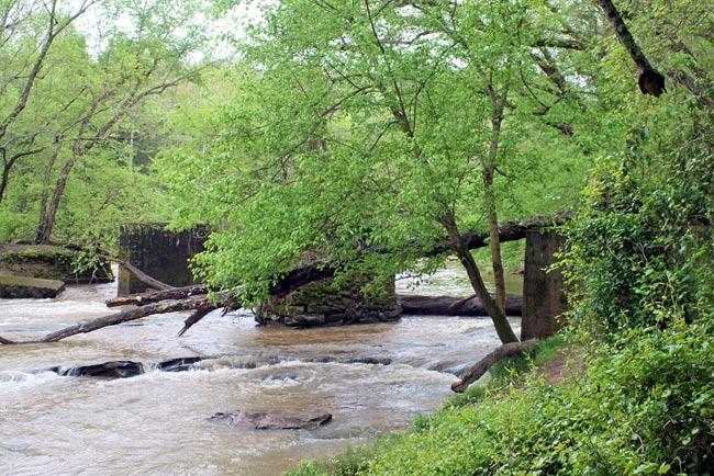 Musgrove Mill Bridge Ruins