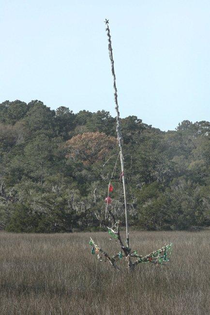Mystery Tree SC
