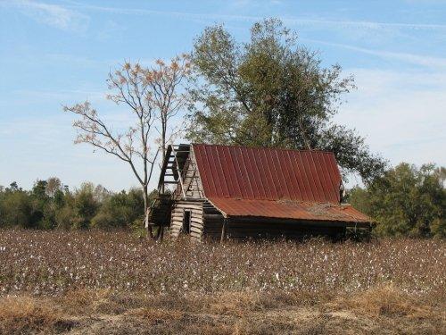 neeses-old-barn