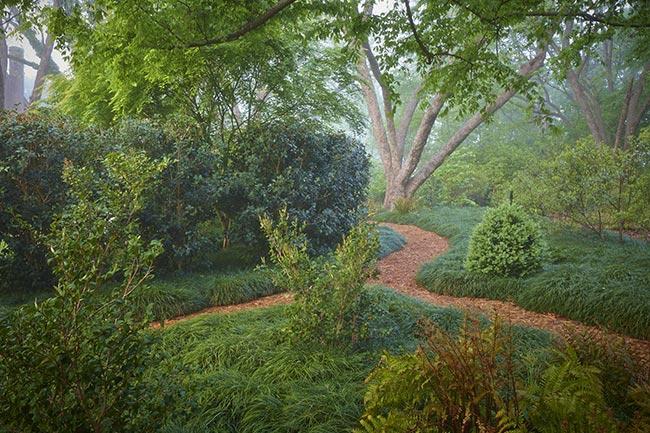 Nicholls-Creek House-Garden