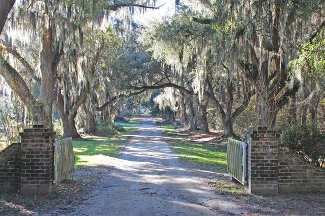 Old House Plantation Entrance