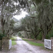 Old House Plantation