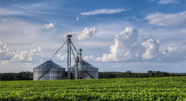 Pageland Farm