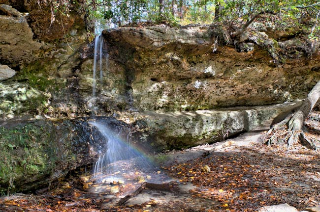 Peachtree Rock Preserve Waterfall