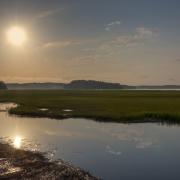 Pinckney Island Wildlife Refuge
