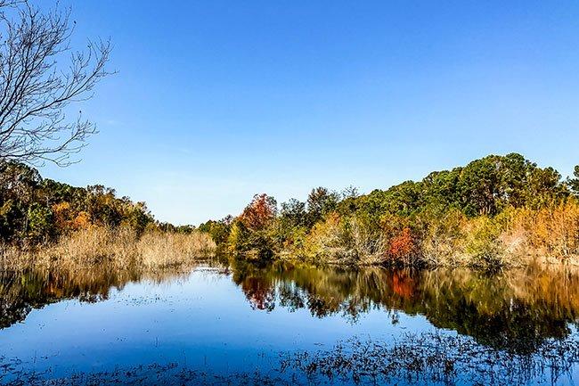 Pinckney Island Wildlife Waterway