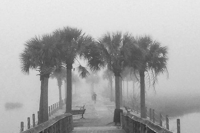 Pitt Street Bridge Fog