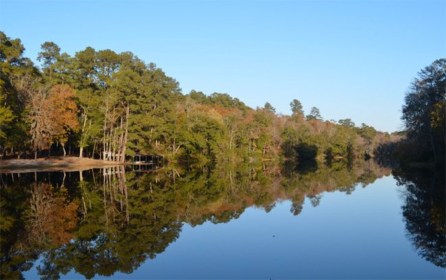 Poinsett State Park Lake