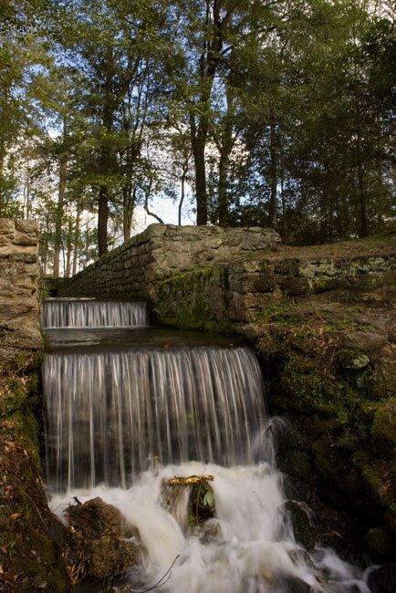 Poinsett State Park