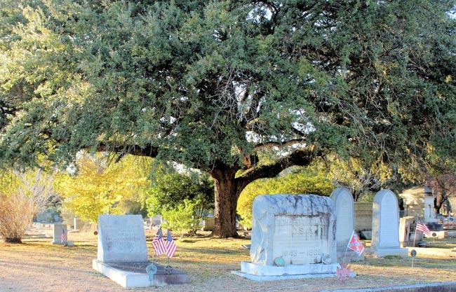Quaker Cemetery Camden