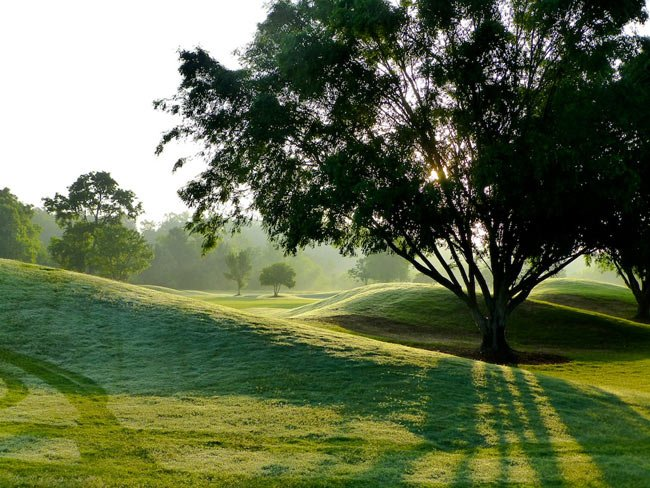 River Golf Club Green