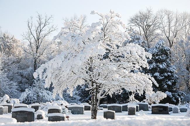 Rudd Branch Cemetery