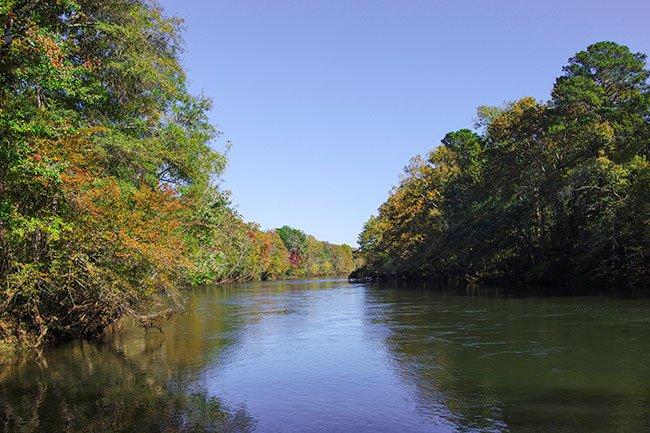 Saluda River Shoals
