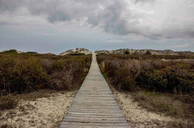 Seabrook Island Baordwalk