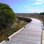 Sewee Shell Ring Trail