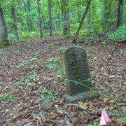 Silver Bluff Headstone