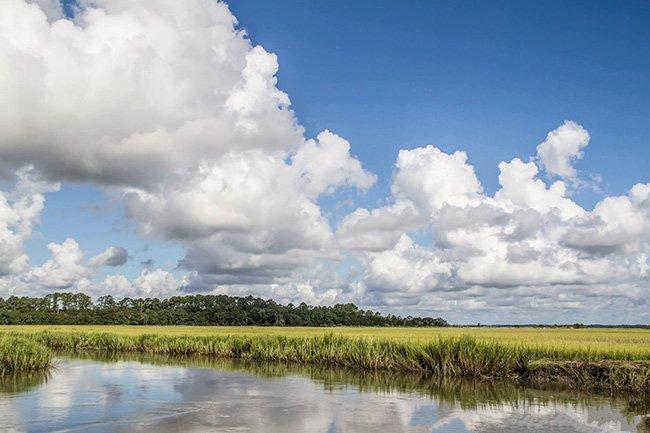Steamboat Landing Marsh