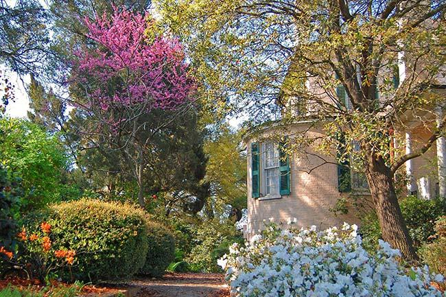 Stewart Parker House Spring