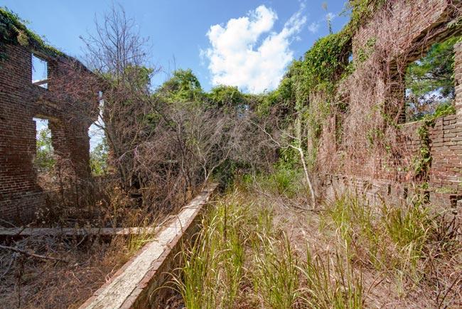 Stoke Rice Mill Ruins