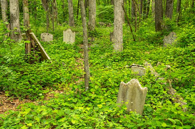 Stone Cemetery Chester County