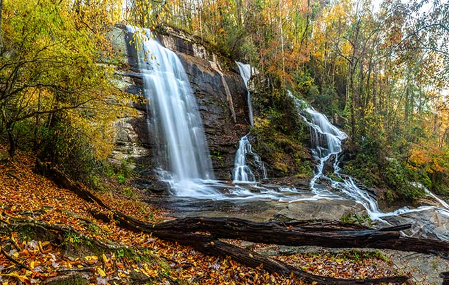 Twin Falls Fall Foliage