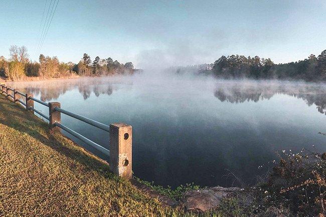 Vaucluse Pond