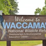 Waccamaw National Wildlife Refuge