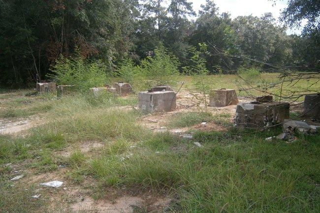 Walterboro Drive In Ruins