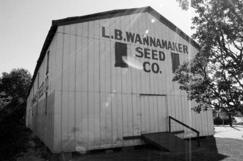 Wannamaker Seed