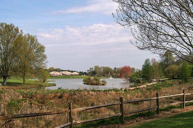 Winthrop University Pond